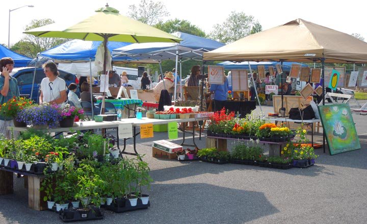 Farmer's Market Experiences Revival in Downtown Cambridge