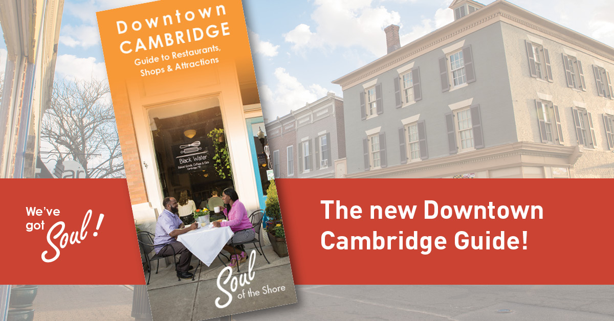 Discover Downtown – Downtown Cambridge